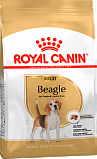 Royal Canin корм для собак породы бигль от 12 месяцев